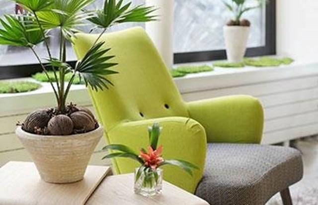 Hotel Palm Astotel Parigi