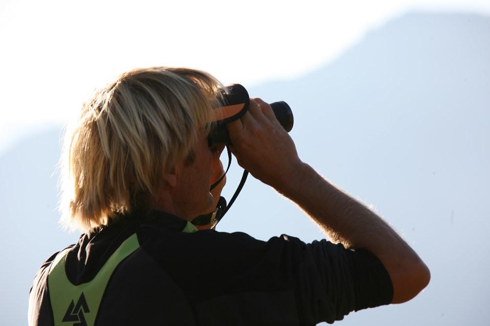 Observation des chamois ©